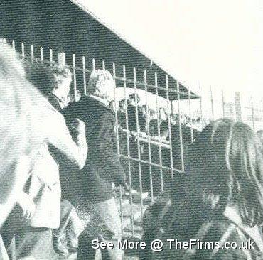 Spurs v Millwall 1976 4