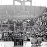 chelsea v man united '85